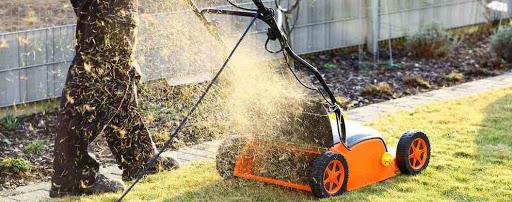 best-lawn-dethatcher